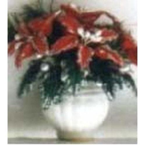 Poinsettia-Red-NCRP0929