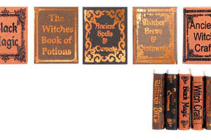 Witch Reference Books- 5 pcs.-NCN1212