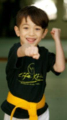 Martial Arts Austin.jpg