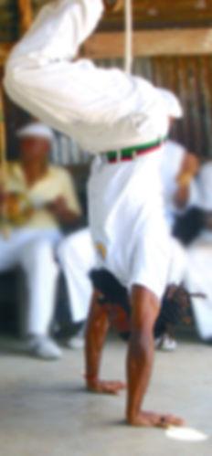 Capoeira_Martial_Arts.jpg