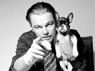Leonardo Wilhelm DiCaprio y su Bulldog Frances
