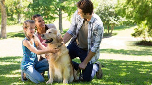 ¿Sabes lo que tú mascota necesita de ti?