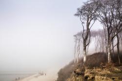 Mecklenburg Vorpommern, TVM