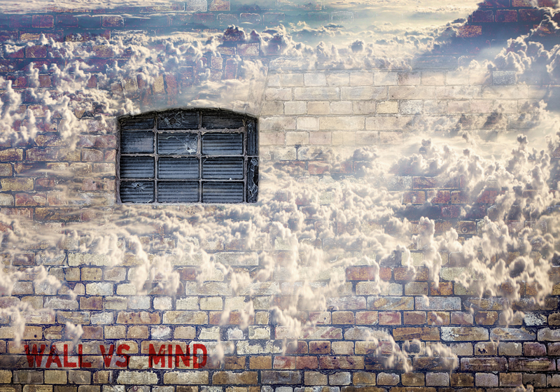 Wall vs Mind