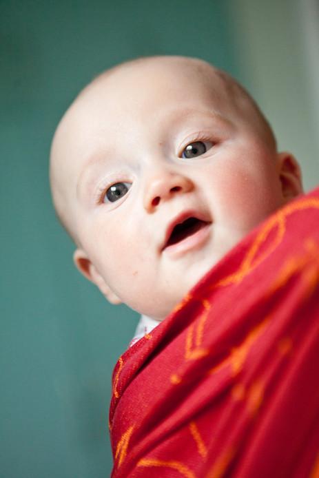 Susanne Krauss - Babyfotografie