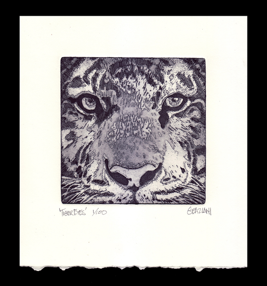 TIGER EYES_5x5 Plate