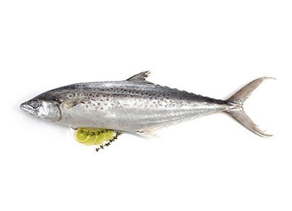 King Fish(Konam)
