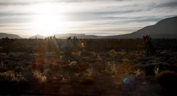 Mojave7