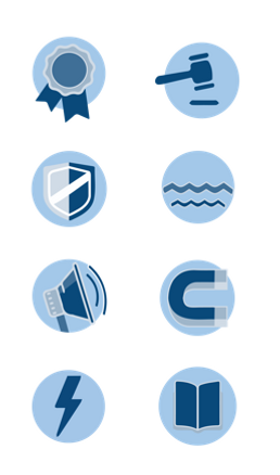 Sales AP Competency icons grouped.png