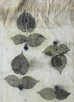 Eco dyeing Marty Staszczyk, liście