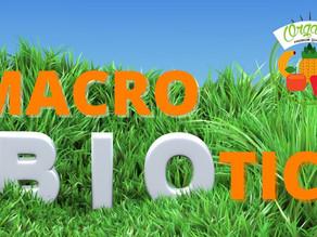 2つのマクロビオティック、目的や効果を解説!