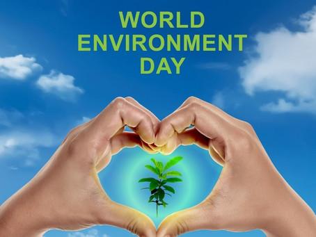 6月5日は世界環境デー 地球にやさしい料理を学びませんか?