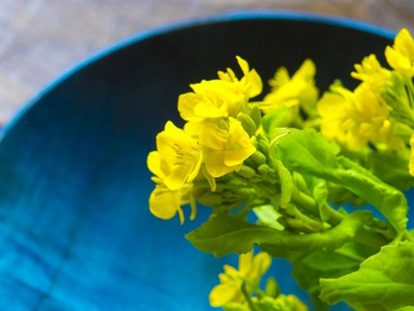 【マクロビオティック】春は青、酸、麦、そして肝臓の季節