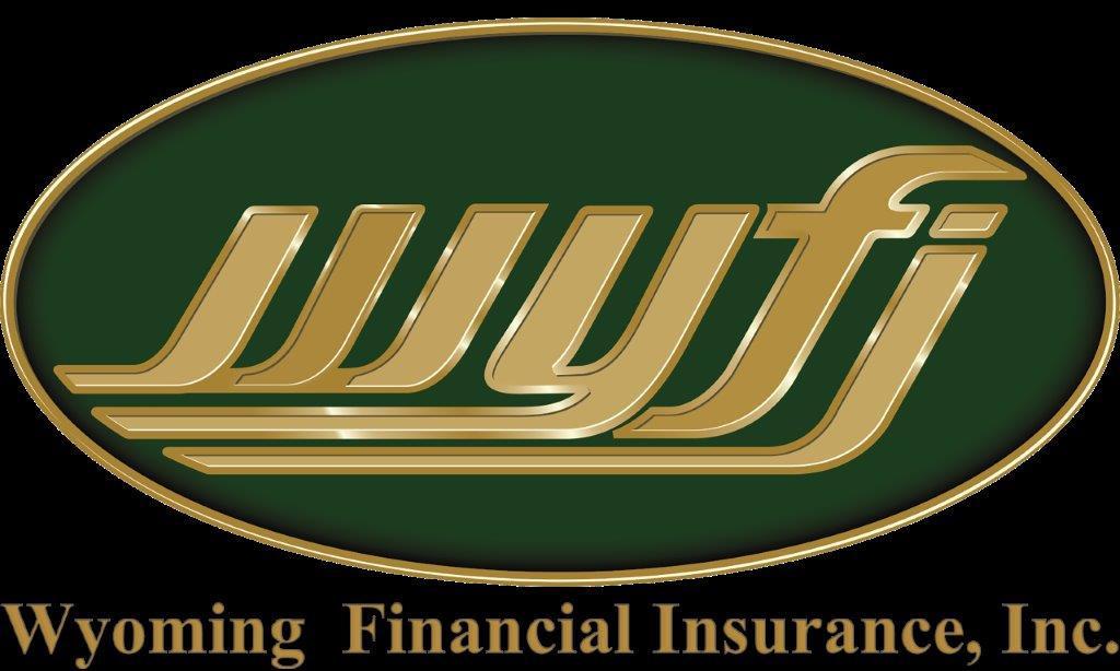 WYFI Logo with TEXT no background (1).jp