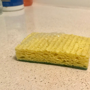 Natural sustainable alternatives to Kitchen Dish Sponges