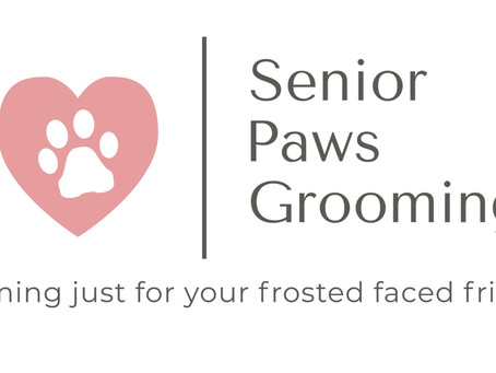 The One About Senior Paws Grooming