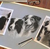 Order a Black & White Pet Portrait (two pets)