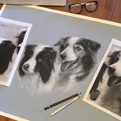Order a Black & White Pet Portrait (two pets)