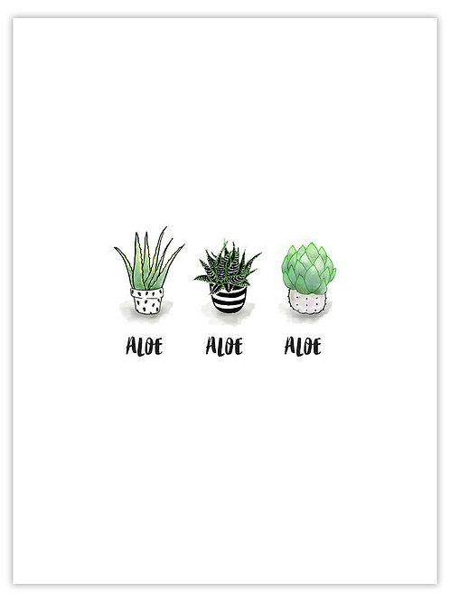 Aloe Aloe Aloe unframed print