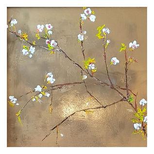 Highland blossoms_Garth_Nichol.jpg