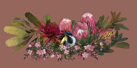 Australian floral: Digital illustration
