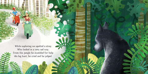 Ozzie the Miracle Stray book illustration