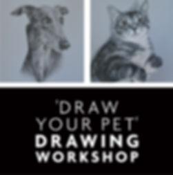 Workshop_pet.jpg