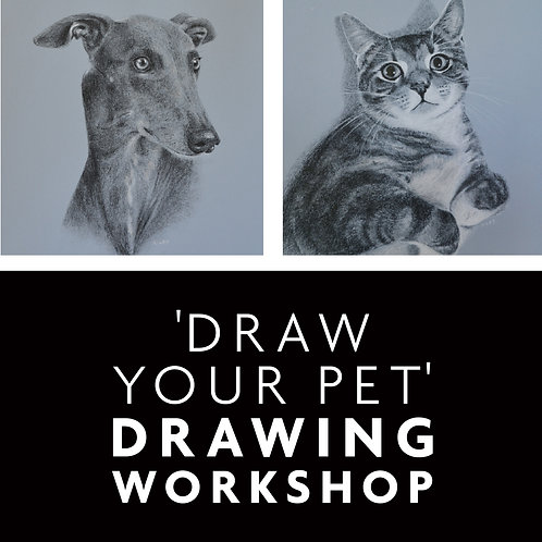 'Draw your cat or dog' workshop