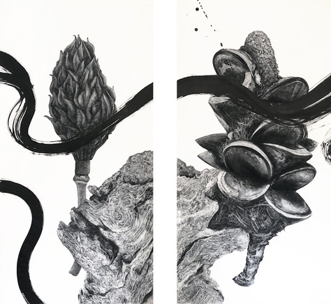 North | South: Charcoal & Sumi ink
