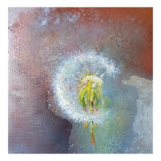 Spring dandelion_Garth_Nichol.jpg