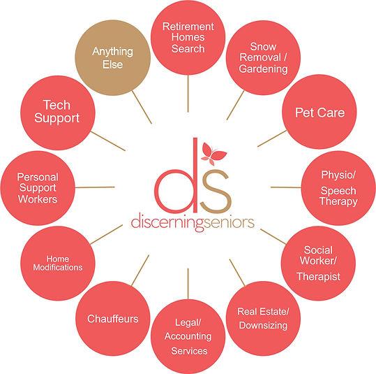discerning seniors services chart