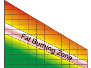 What IS the Fat Burning Zone?