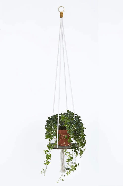 Studio Wald Plant Hanger
