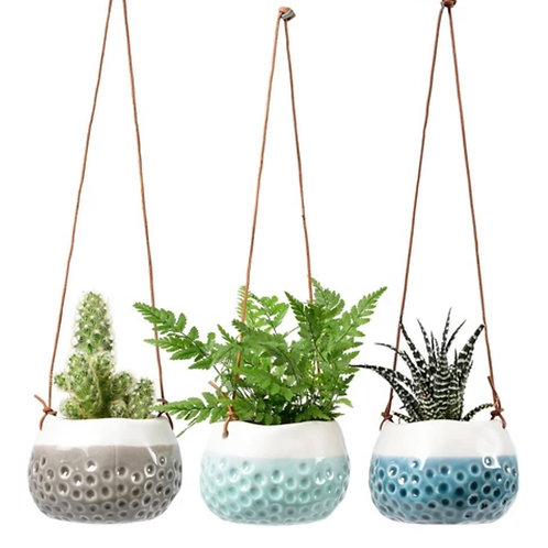 Set of 3 'baby dotty' hanging planters