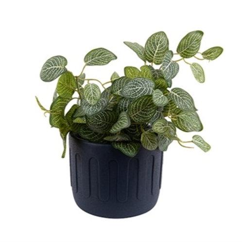 Present Time Cement Drip Plant Pot