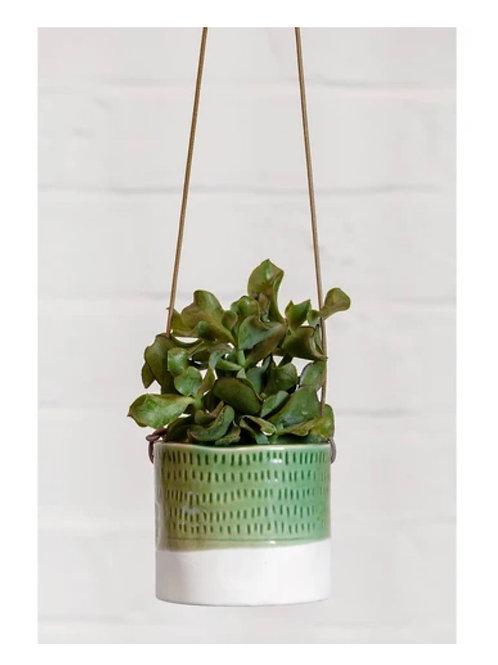 Pie-crust hanging planter