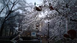 Henry Hudson Park, Ice Storm