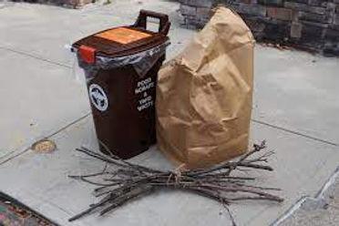 compost not trash.jpg