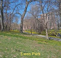 Ewen1_edited_edited.png