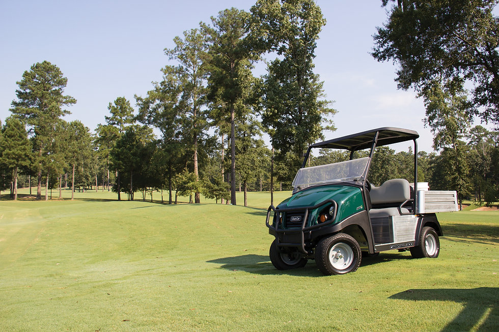 Carryall 300 Golf Turf Image.jpg