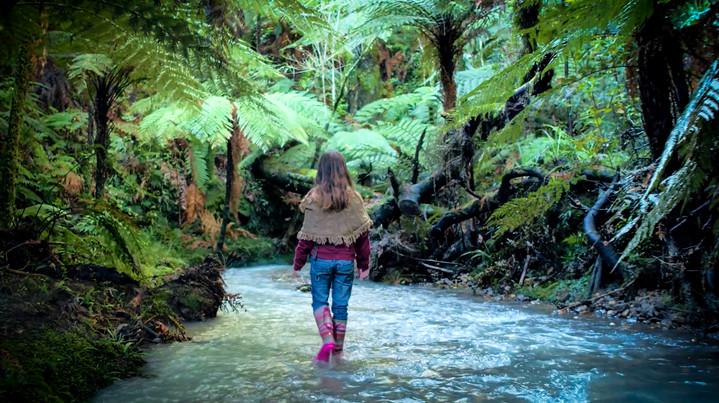 Storytelling in the Waikato, NZ
