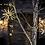 Thumbnail: WARM WHITE Starburst Kit of 3