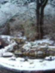 winterization.jpg