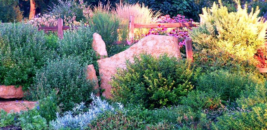 Master Landscape Rock Garden
