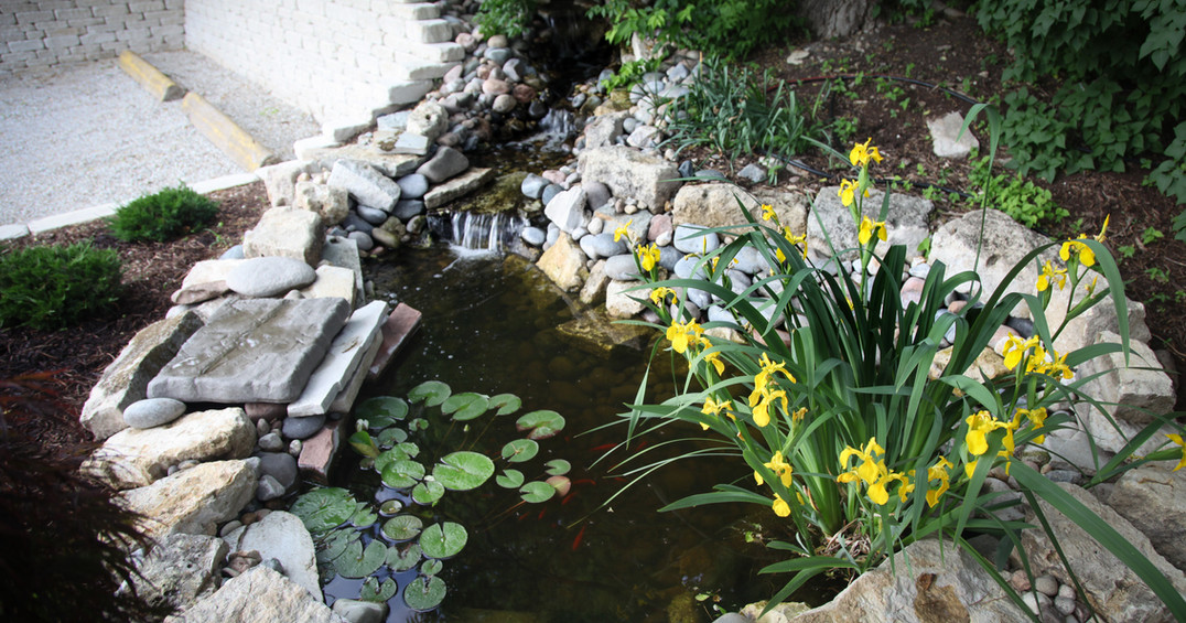 water-2.jpg
