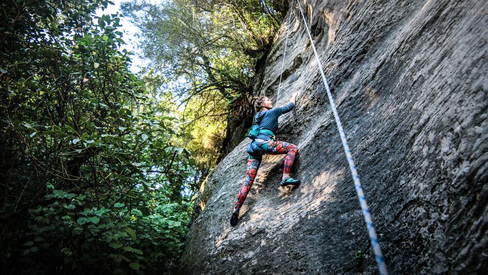 Climbing Payne'