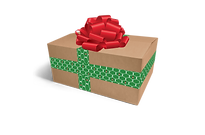 cci_wrapped_gift_reverse1.png