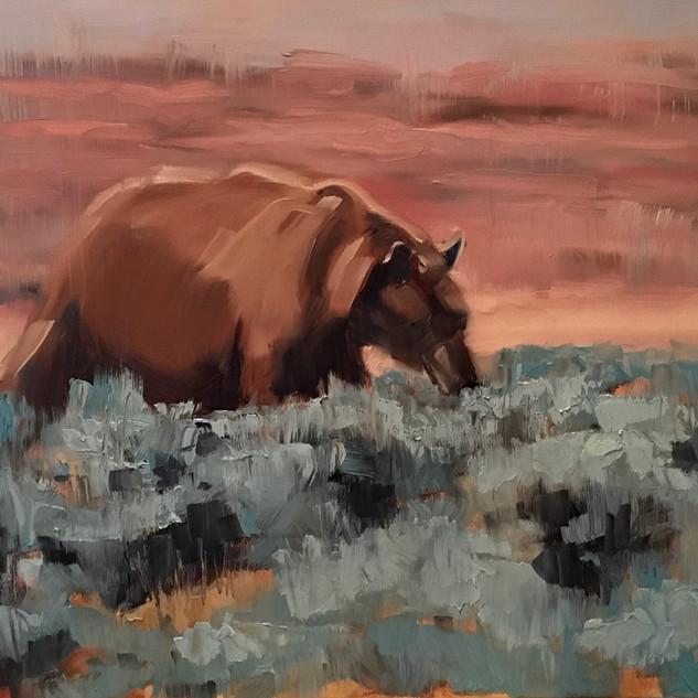 Sage brush bear. Oil 18x22 $500.jpeg