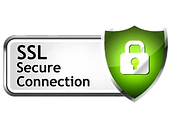 ssl-security-plan.webp