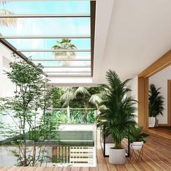 Tropical Modern indoor garden